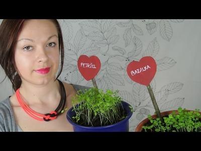 Zápichy a popisky na bylinky. Garden Herb Signs. DiY